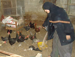 Nadine with chickens