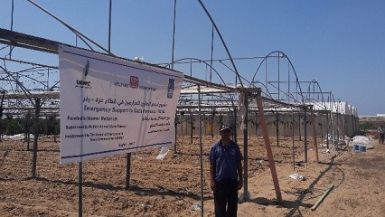 Gaza Farmers destroyed greenhouses edited.jpg
